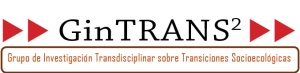 Logo GinTrans2 negro 96ppi media_resolución
